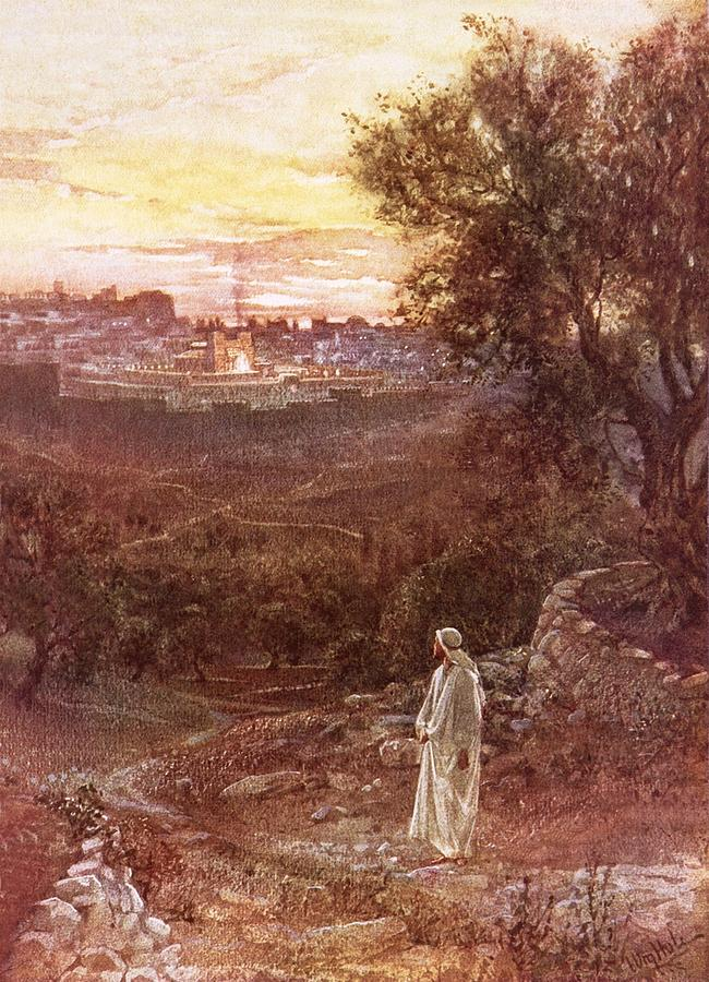 William Painting - Jesus On The Mount Of Olives by William Brassey Hole
