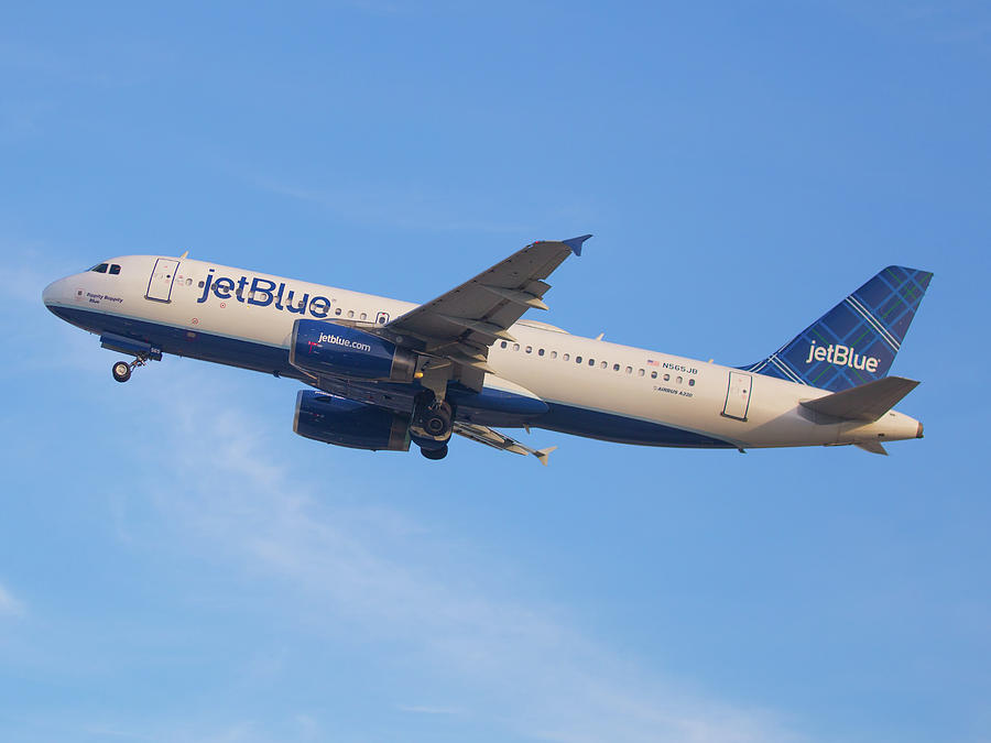 Jet Blue Photograph by Dart Humeston