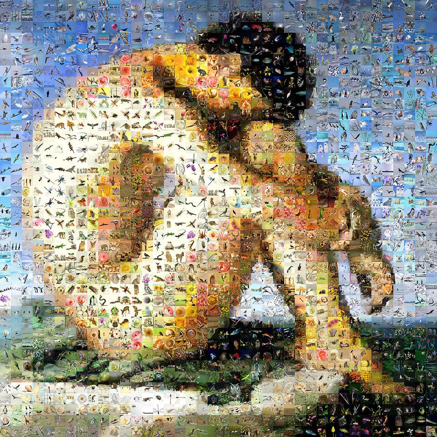 Jeune Homme Nu Assis Au Bord De La Mer Digital Art By