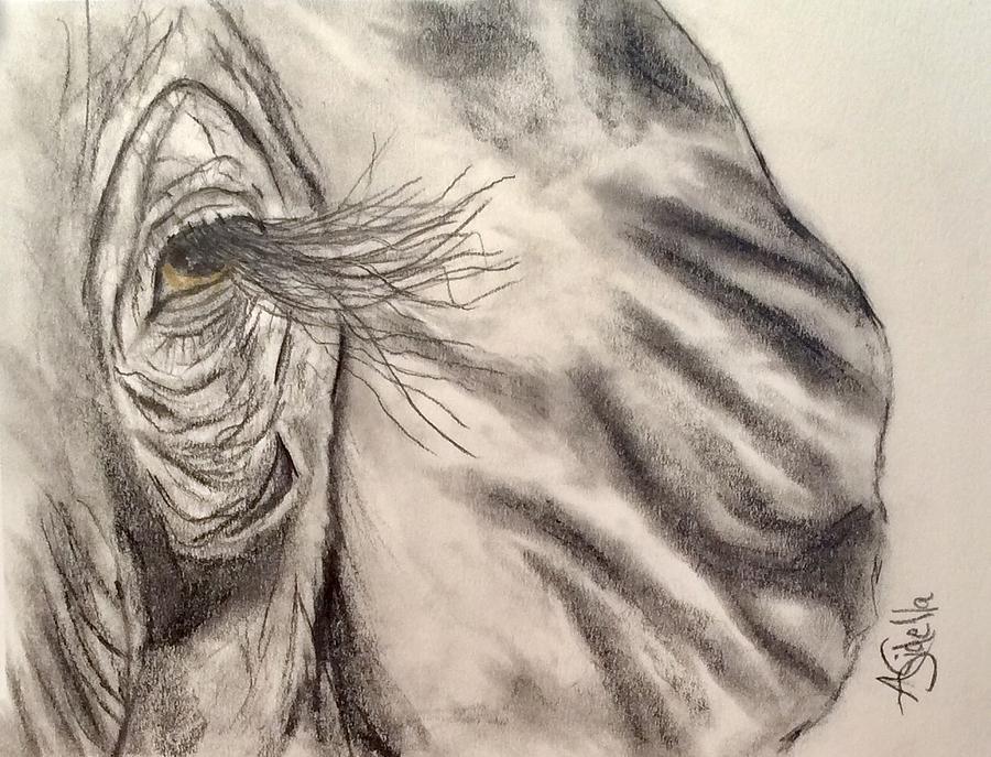 Jewel by Annamarie Sidella-Felts