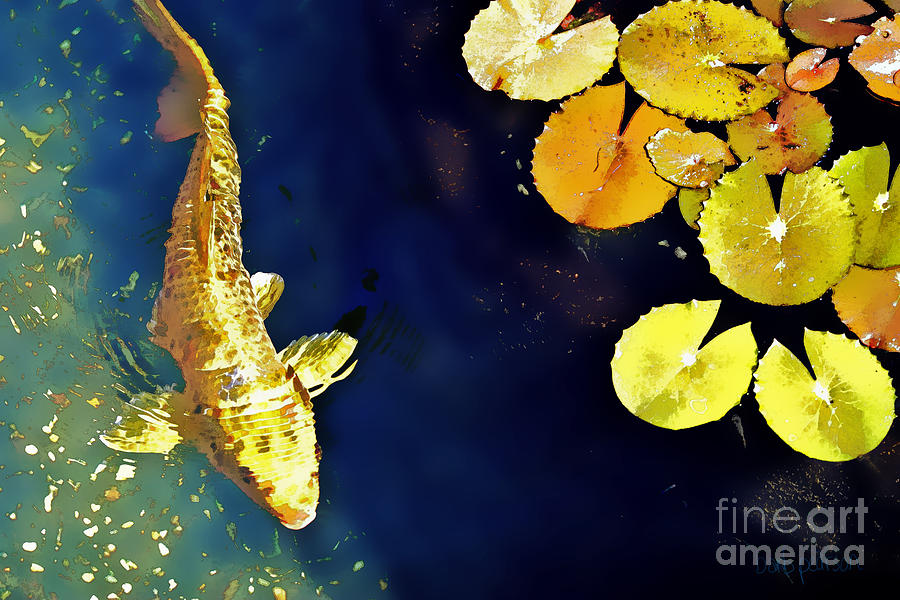 Koi Photograph - Jewel of the Water by Barb Pearson