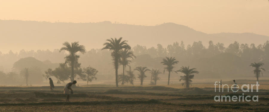 Landscape Photograph - Jharkhand Early Morning by Angie Bechanan