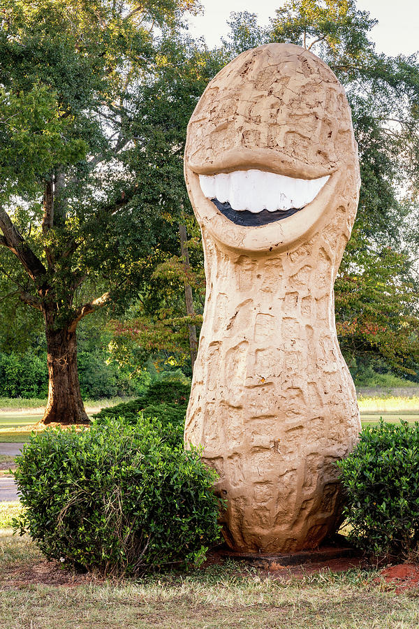 Jimmy Carter Peanut, Plains, Georgia by Dawna Moore Photography