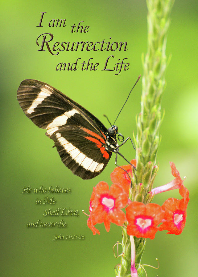 The Resurrection and the Life by James Capo for Foundation Outreach Internationa