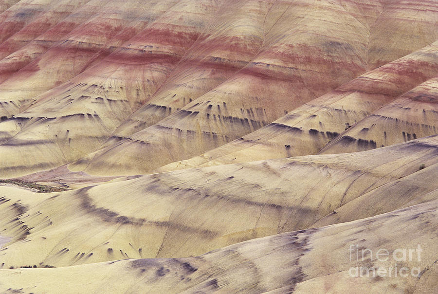 Abstract Photograph - John Day Fossil Beds by Greg Vaughn - Printscapes