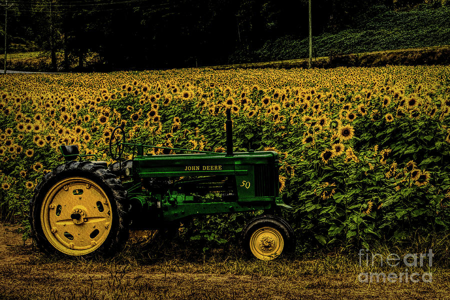 John Deer Tractor in Sunflower field by Barbara Bowen