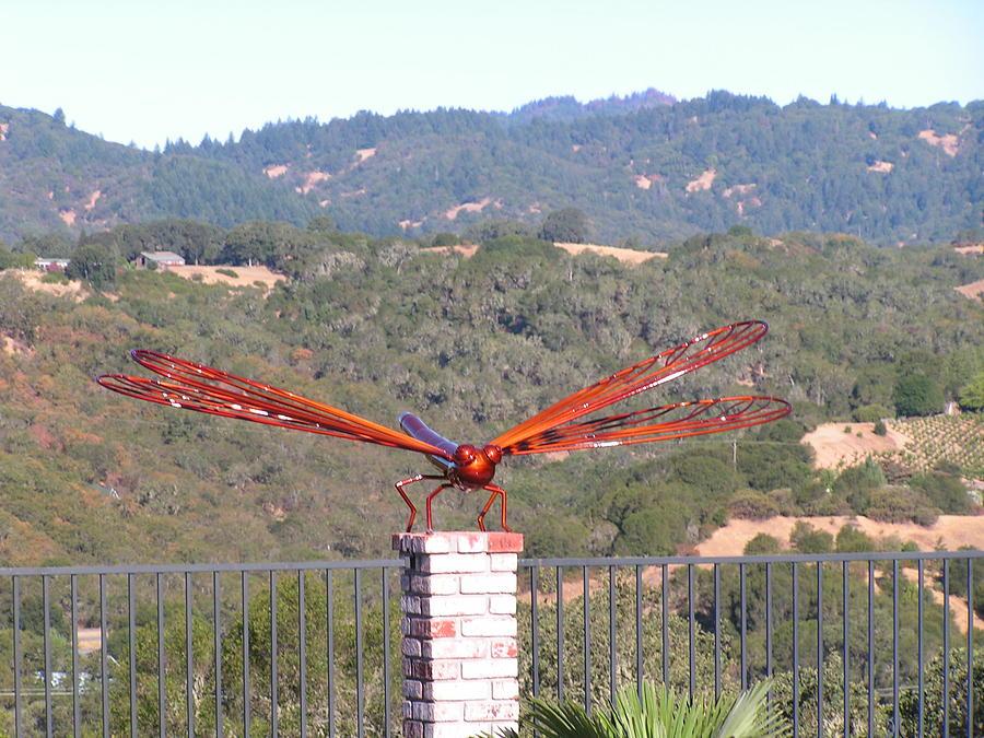 Sculpture Sculpture - Jolly Pop Dragonfly by John Jones