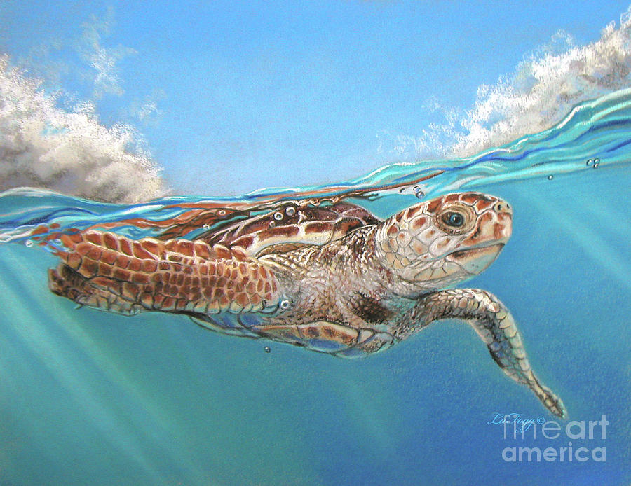 Sea Life Painting - Jonah by Deb LaFogg-Docherty