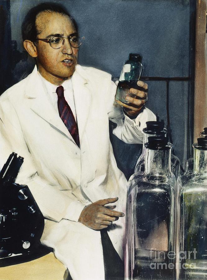1950s Photograph - Jonas Salk by Granger