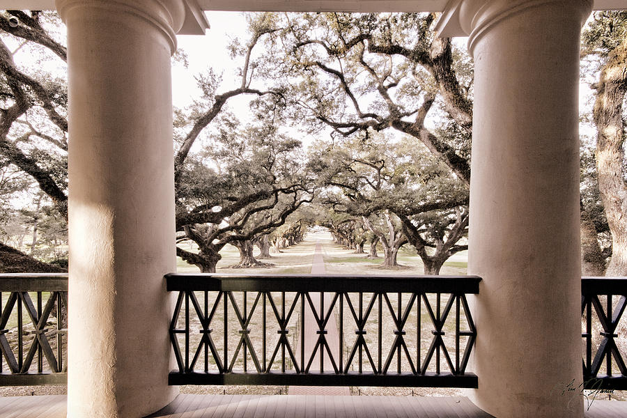 Oak Alley Photograph - Josephines View Of Oak Alley Plantation by Timothy V Ganier