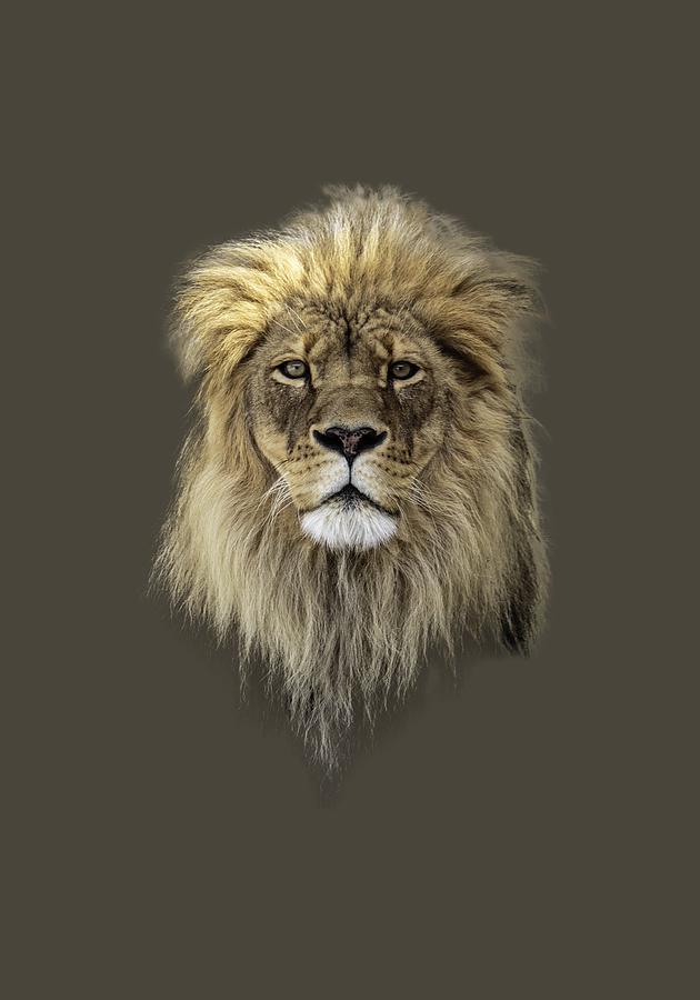 Lion Photograph - Joshua T-shirt Color by Everet Regal