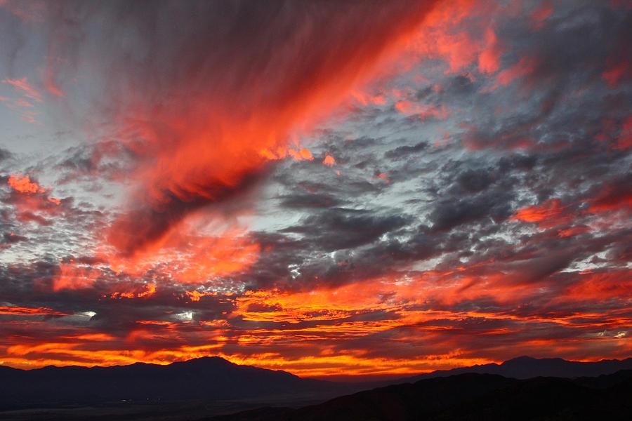 Joshua Tree Sunset by Jon Reddin