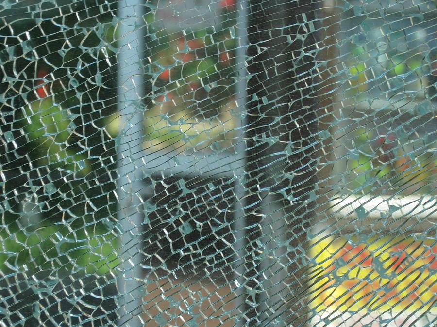 Joule Photograph - Joule In The Glass 4 by Kostyantyn Serodkin