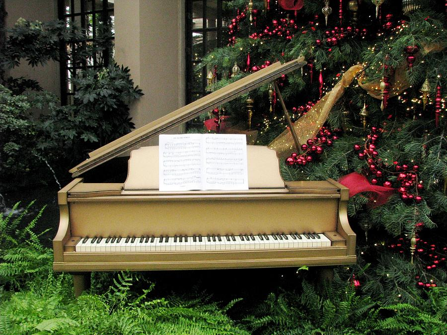 Baby Grand Pianos Photograph - Joy To The World by Angela Davies