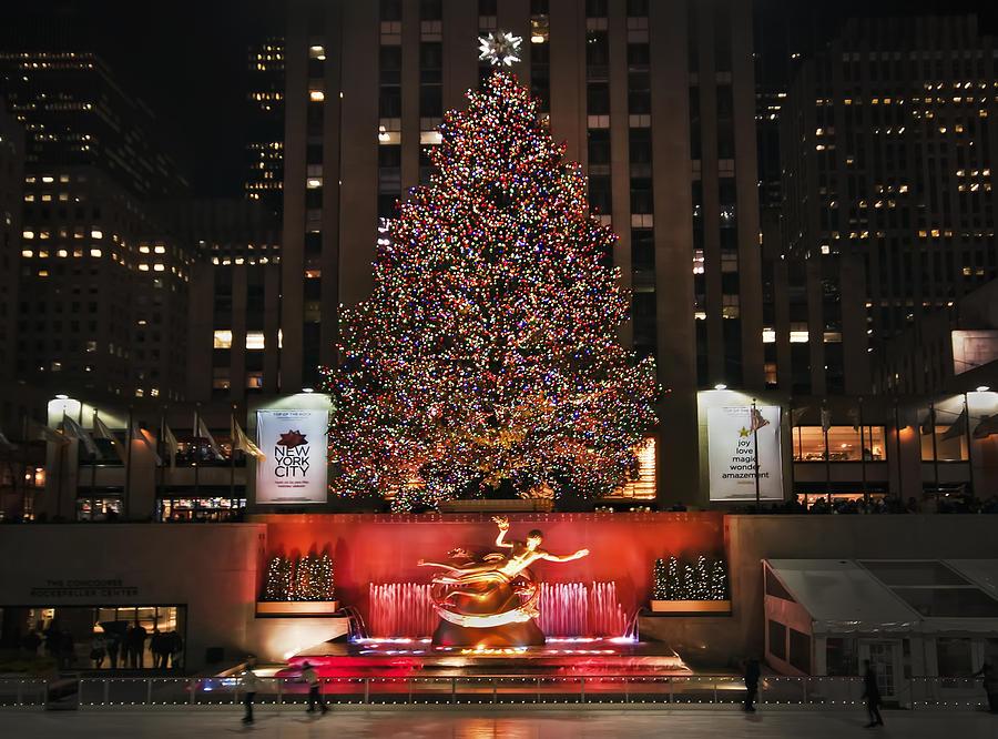 Christmas Photograph - Joy To The World by Evelina Kremsdorf