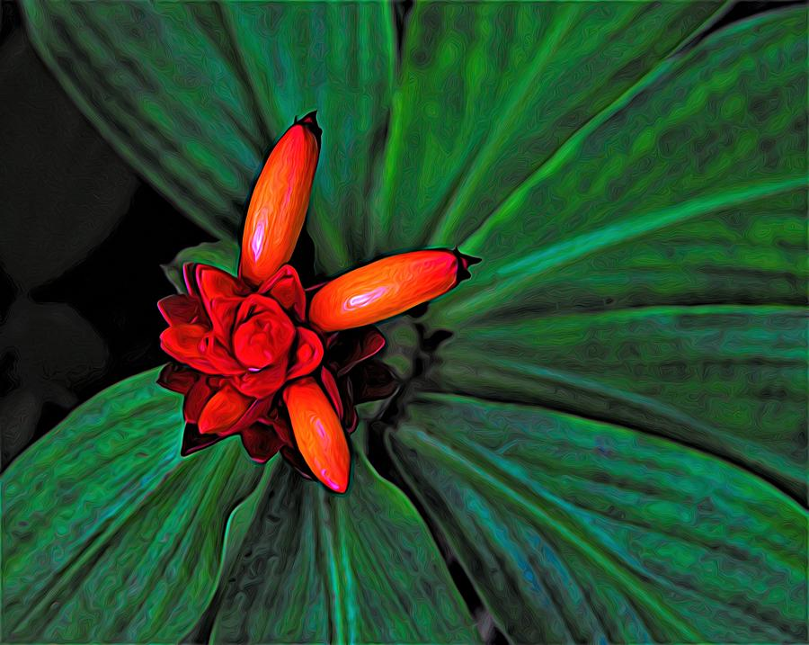 Digital Design Digital Art - Joyful Spiral by Heidi Fickinger