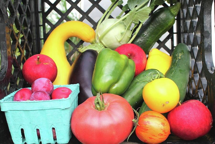 July Produce 2 Photograph