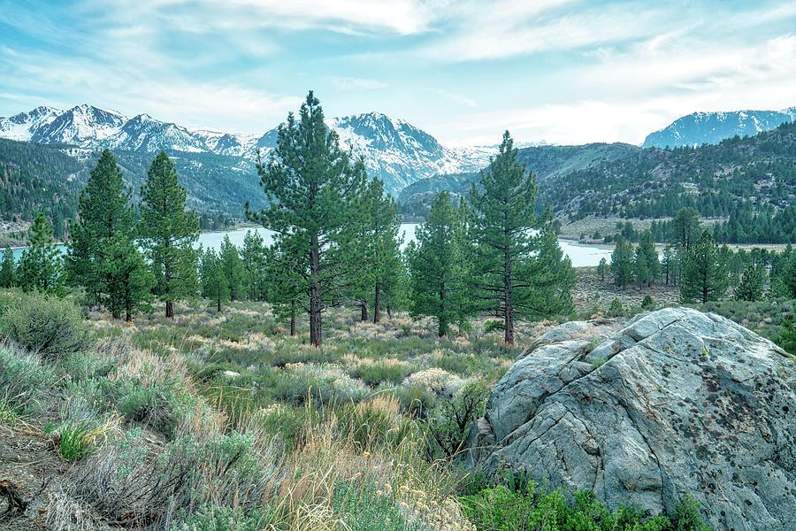 June Lake California Photograph