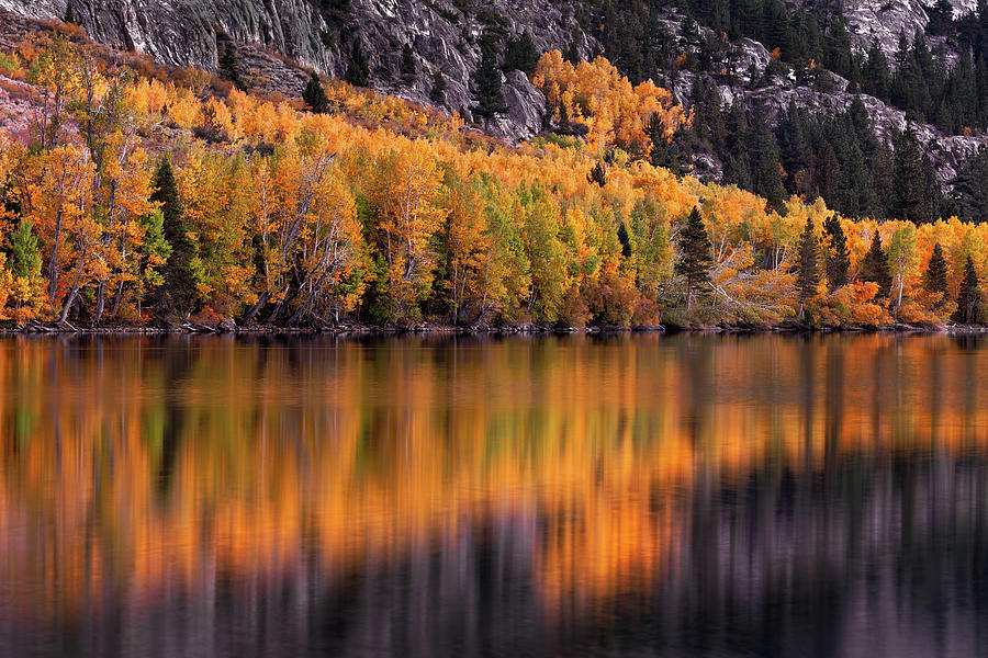 June Lake Photograph