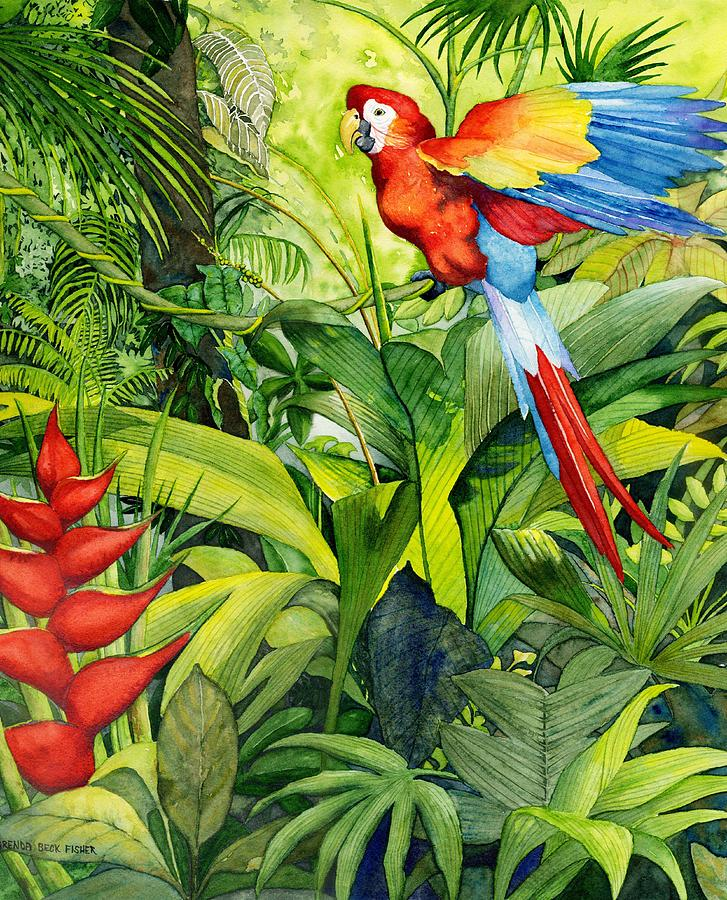 Macaw Painting - Jungle Fever by Brenda Beck Fisher