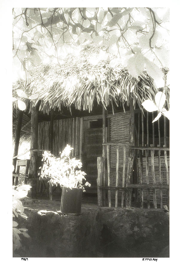 Black And White Photograph - Jungle Hideaway by Jerry McElroy