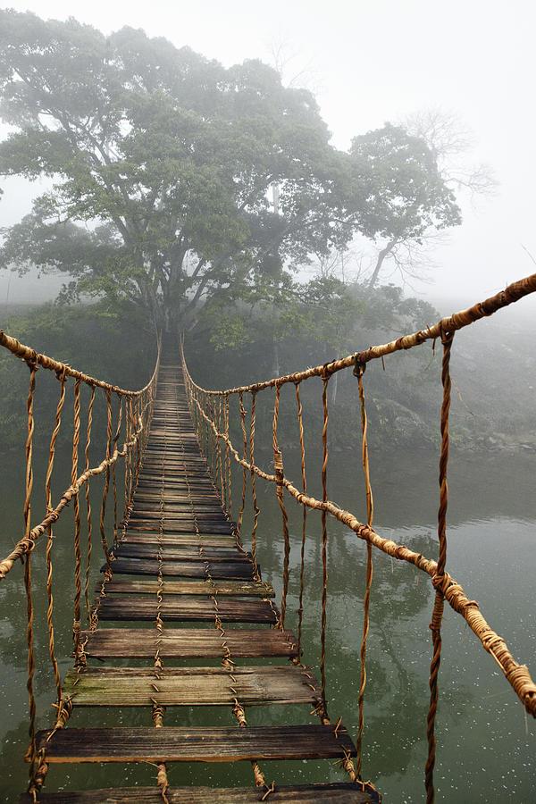 Rope Bridge Photograph - Jungle Journey 2 by Skip Nall