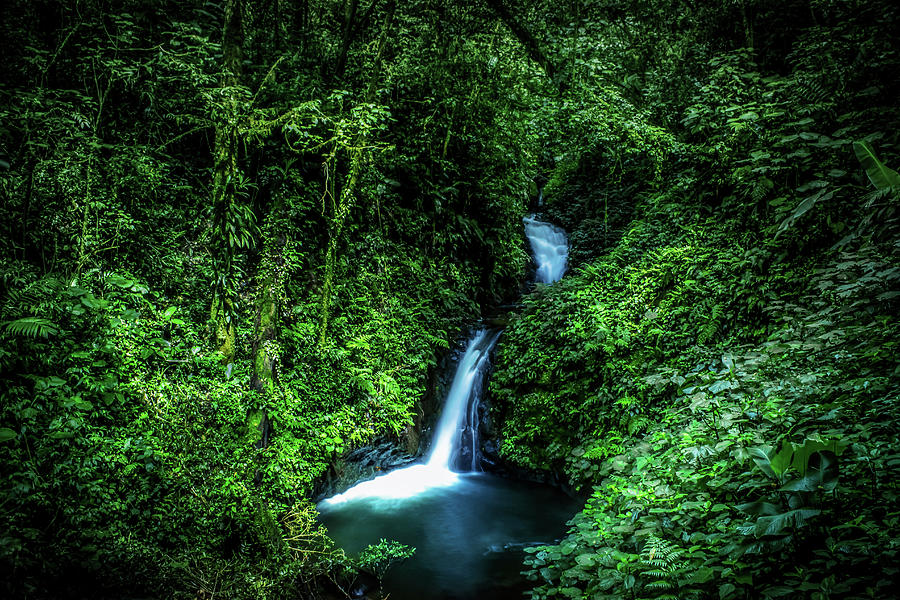 Jungle Photograph - Jungle Waterfall by Nicklas Gustafsson
