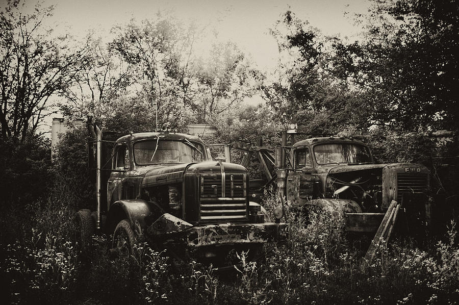 Salvage Yard Photograph - Junkyard Dogs IIi by Off The Beaten Path Photography - Andrew Alexander