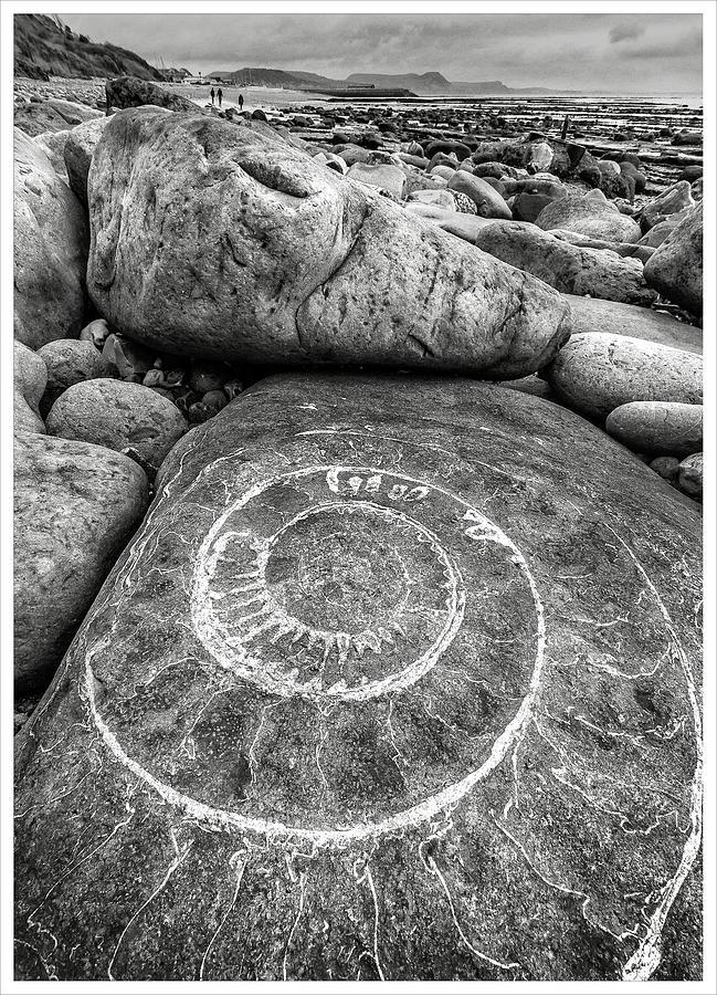 Jurrasic coast by Richard Greswell
