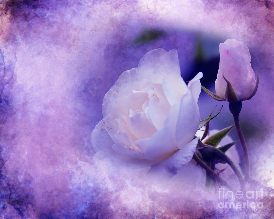 3d Digital Art - Just A Lilac Dream -4- by Issabild -