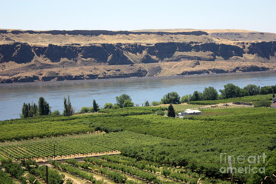 Columbia River Gorge Photograph - Just Add Water... by Carol Groenen