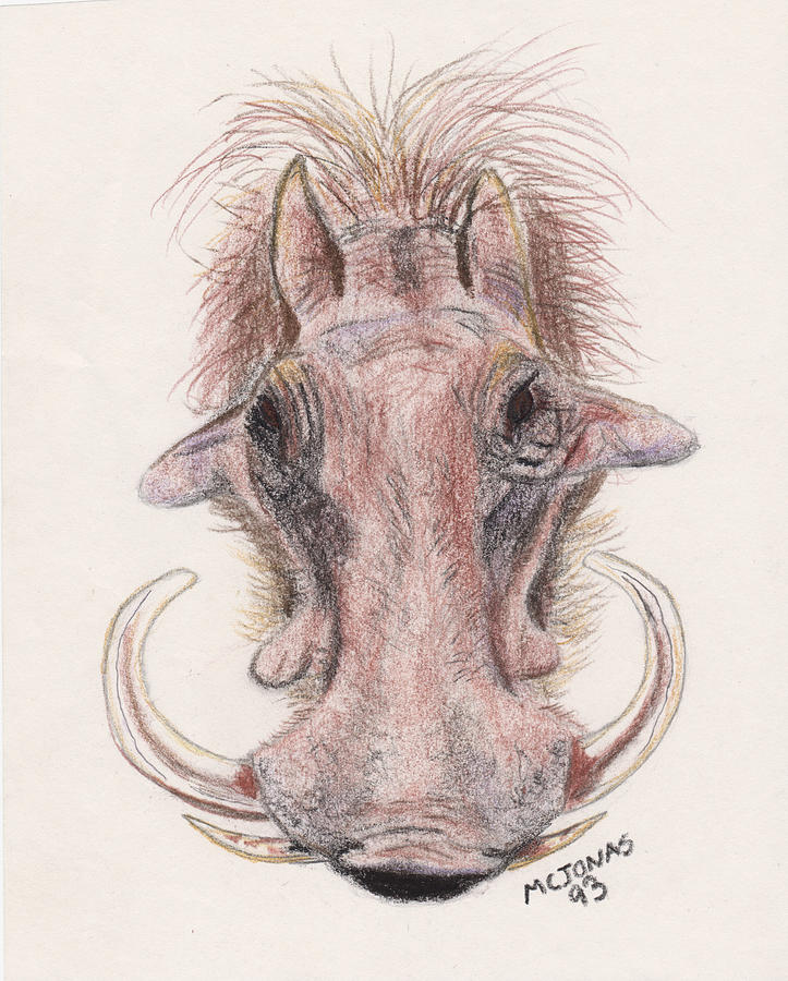 Warthog Drawing - Just Another Pretty Face by Marqueta Graham
