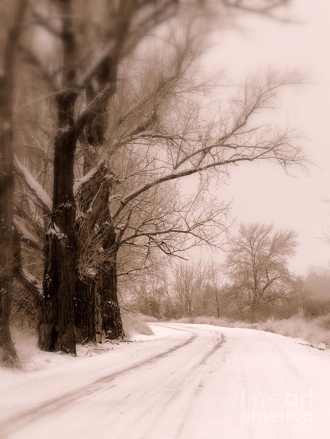 Winter Photograph - Just Around The Bend  by Carol Groenen