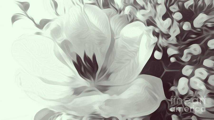 Flower Photograph - Just Because by Heather L Wright