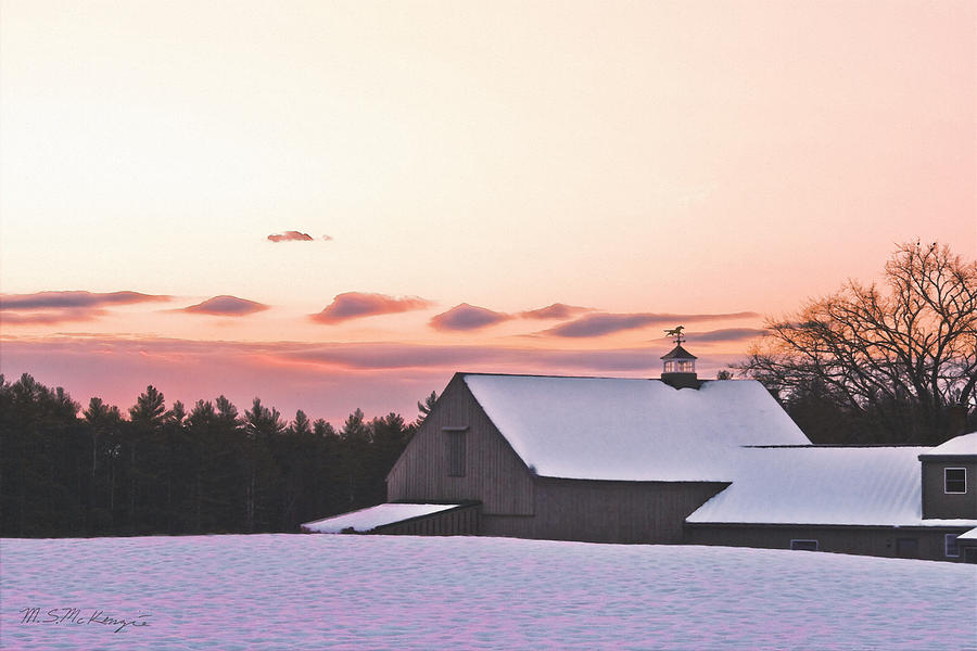 Winter Photograph - Just Before Christmas by M S McKenzie
