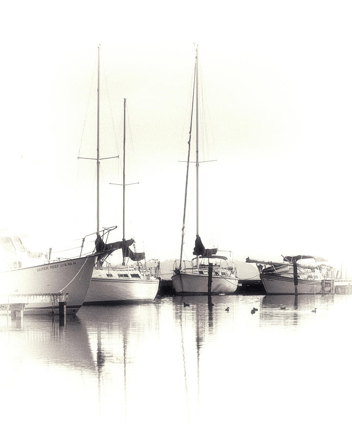 Boat Photograph - Just Boats by Jeannee Gannuch