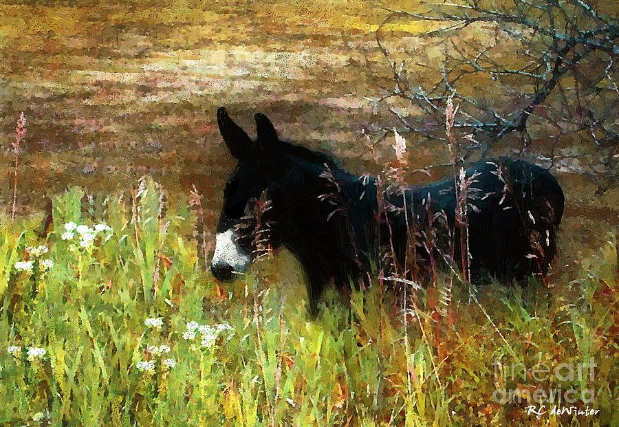 Burro Painting - Just Chillin by RC DeWinter