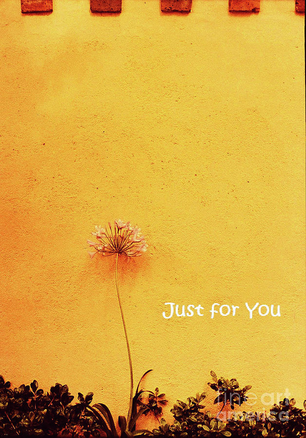 Just For You Card Photograph