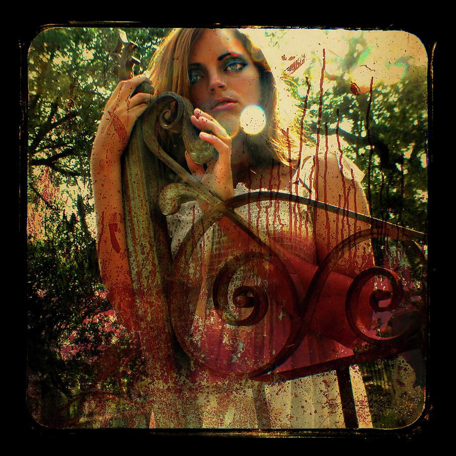 Ttv Photograph - Just Look At This Mess by Melissa Wyatt