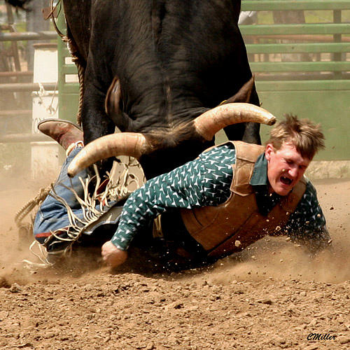 Rodeo Photograph - Just Not My Day... by Carol Miller
