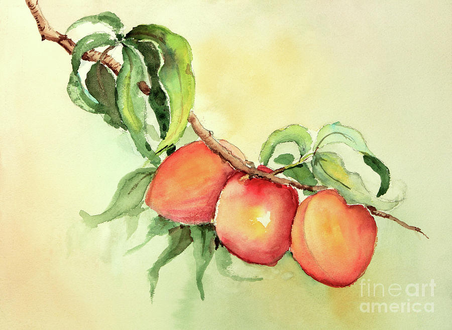 Just Peachy by Pattie Calfy