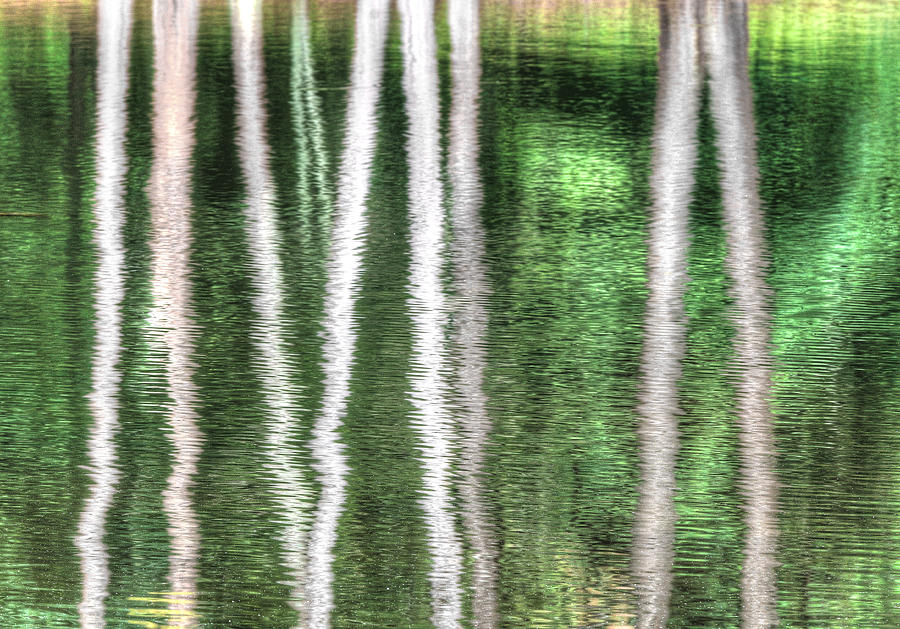 Green Pond Reflections Photograph