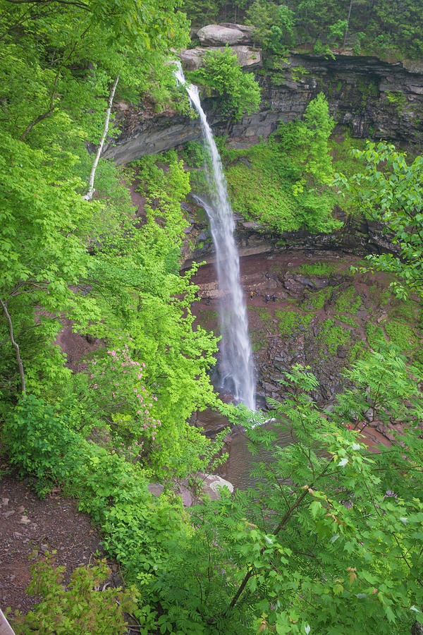 Kaaterskill Falls 2018 by Kenneth Cole