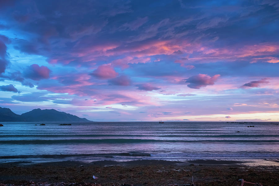 Joan Carroll Photograph - Kaikoura New Zealand Dawn by Joan Carroll