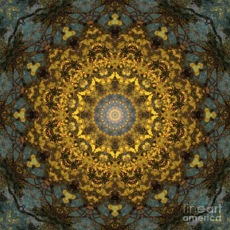 Kaleidoscope 092 Digital Art by Paul Gillard
