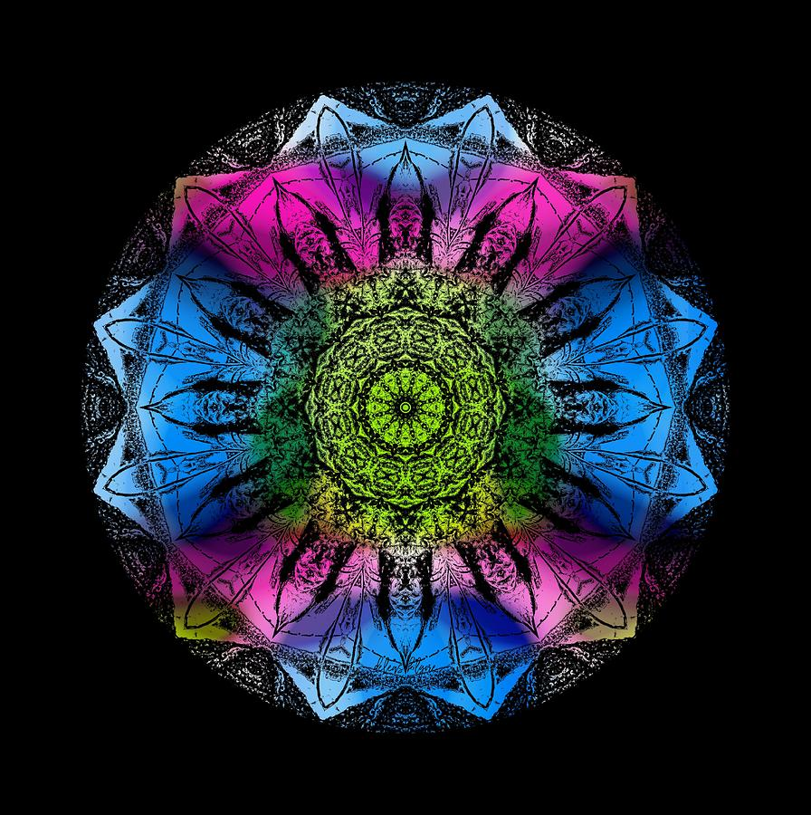 Kaleidoscope - colorful by Deleas Kilgore