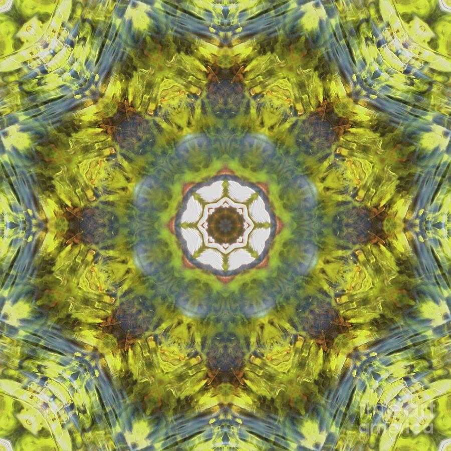 Kaleidoscope O Eighty Five Digital Art by Paul Gillard