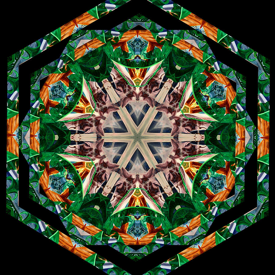 Kaleidoscope of Paradise I by Jennie Eve Barnett