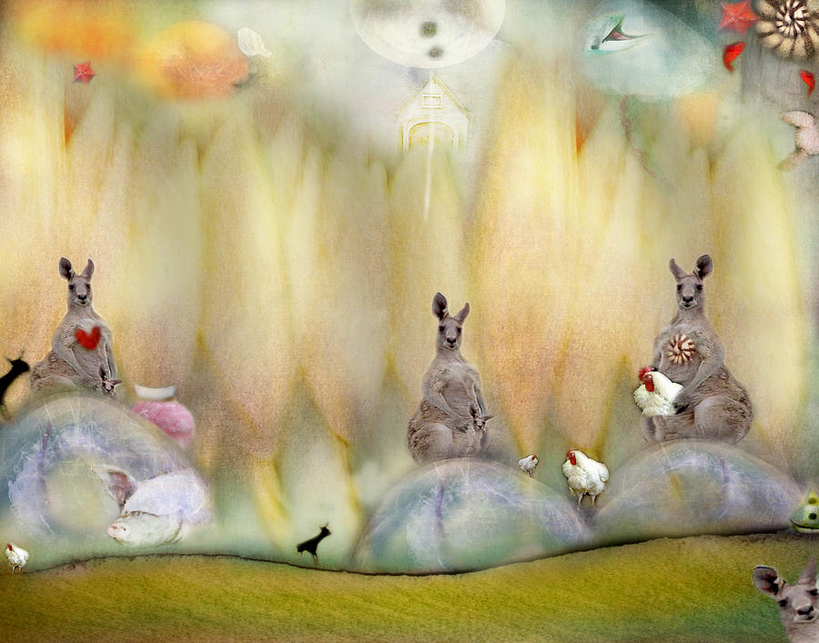 Kangaroo Photograph - Kanga by Karen Divine