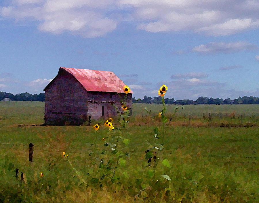 Landscape Photograph - Kansas Landscape by Steve Karol